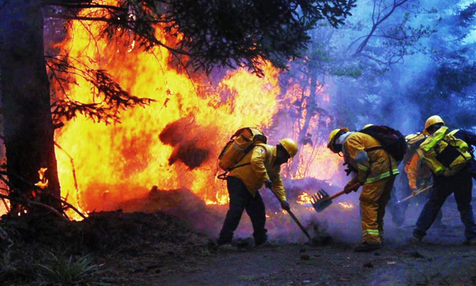 Autoridades mexicanas trabajan en la prevención de incendios forestales